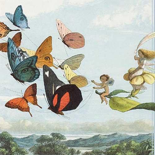 Detail of fairies riding butterflies