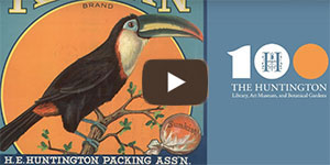 Toucan on orange label from early 20th century