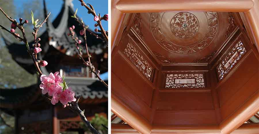Peach blossom and carved ceiling of the Pavilion of Three Friends
