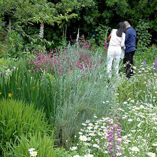 Couple in Shakespeare Garden