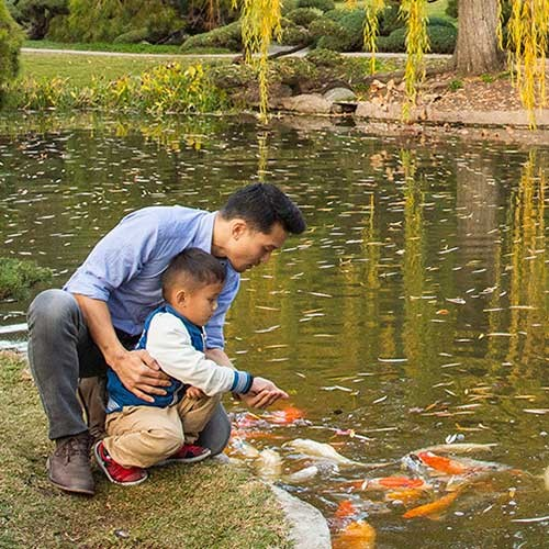 father and son at fish pond