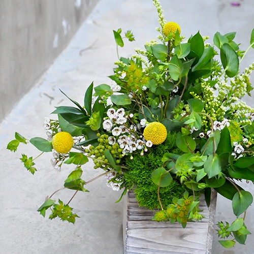 Bouquet of flowers with herbs