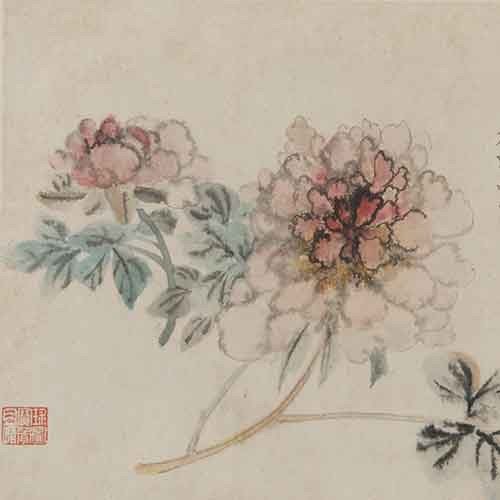 Album of Flowers and Portrait of Shitao—Peonies, 1698. Attributed to Shitao. Arthur M. Sackler Gallery, Smithsonian Institution.