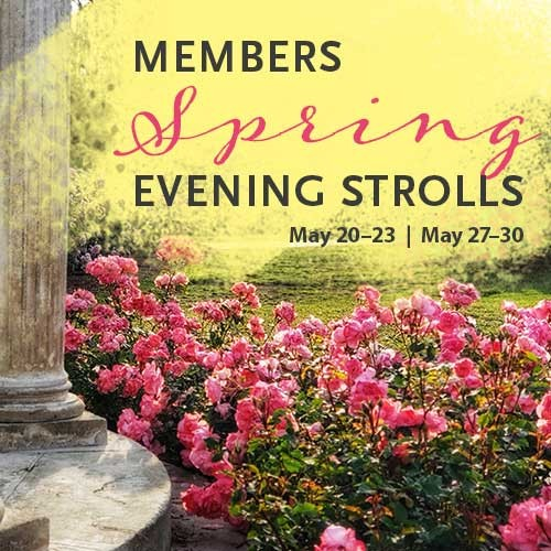 Members spring evening stroll graphic
