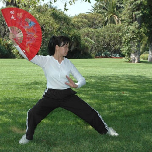 A woman with a fan doing tai chi
