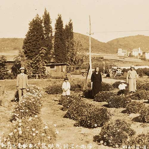 20th century photo of Japanese family in flower field