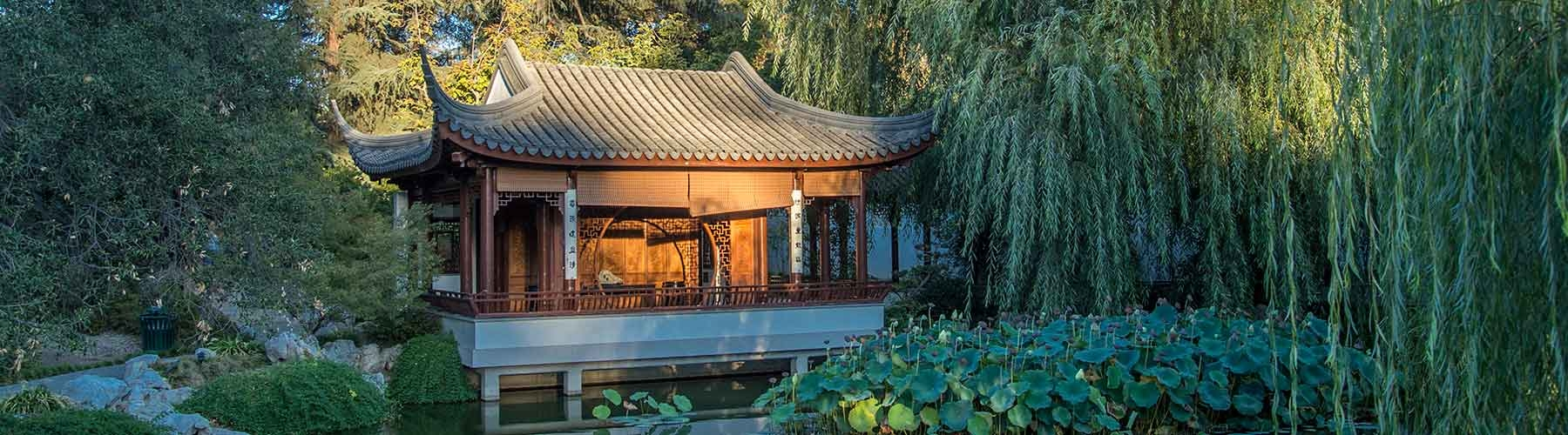 pavilion in the chinese garden
