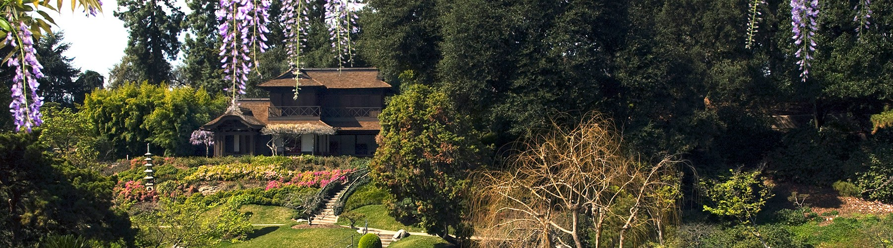 Japanese Garden The Huntington