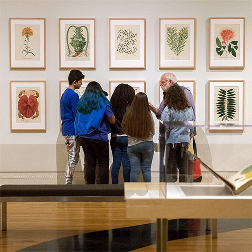 Instructor speaking with students in front of botanical prints