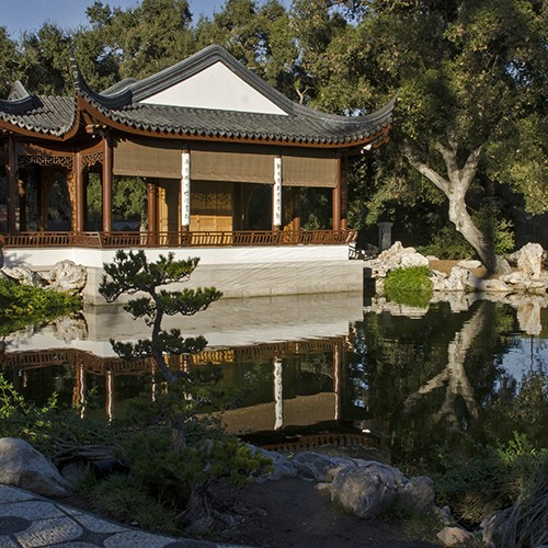 Image of Chinese Garden