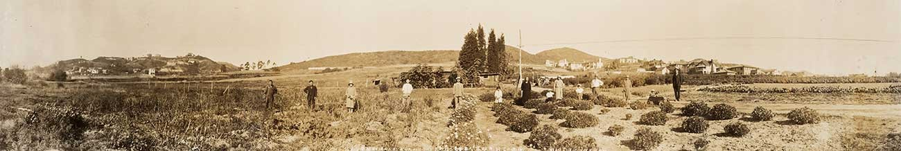 Flower Field in Los Angeles-Hollywood, California, United States, Operated by the Kuromi Family of Shimane Prefecture, March 1, 1928, Paris Photographic Studio. Panoramic photo of the Kuromi family in a flower field off of Los Feliz Boulevard.