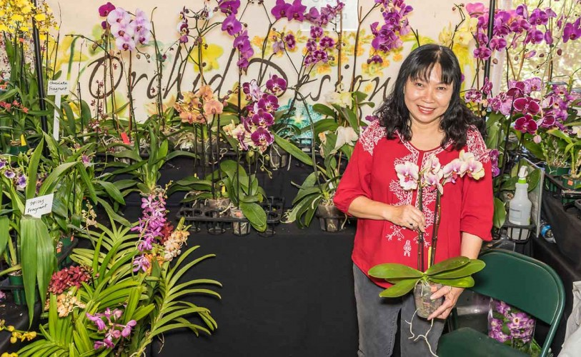 Lady selling orchids