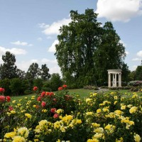 Rose Garden with tempietto in the background
