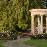 """The centerpiece of The Huntington's historic Rose Garden is the 18th-century French stone tempietto encircling a sculpture titled Love, the Captive of Youth. Appropriately, the tempietto is surrounded by a bed of """"Passionate Kisses"""" roses. Photo: Alexander Vertikoff. The Huntington Library, Art Museum, and Botanical Gardens."""