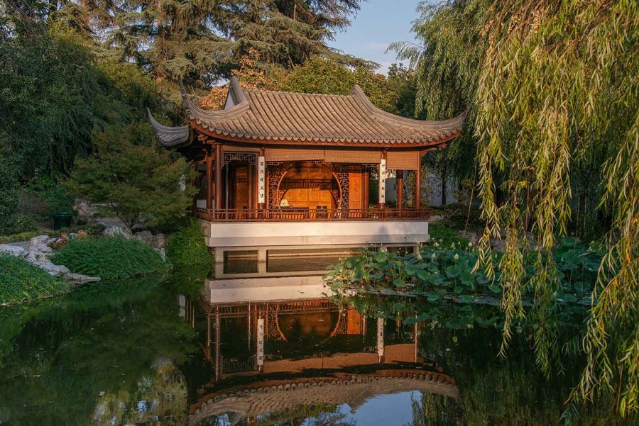 One of the original features that opened in 2008: the Love for the Lotus Pavilion. Photo by Martha Benedict. The Huntington Library, Art Museum, and Botanical Gardens.