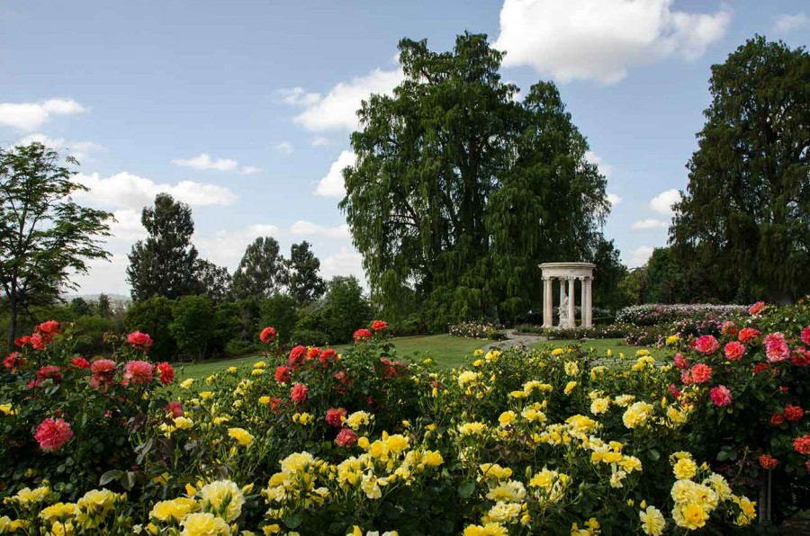 News Release The Huntington To Reopen Gardens July 1 With Safety Measures In Place The Huntington