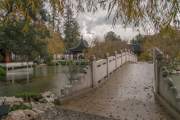 With systems in place to harvest rainwater and prevent flooding in areas like the Chinese Garden, The Huntington is readier than ever to weather the storm. Photo by Martha Benedict.