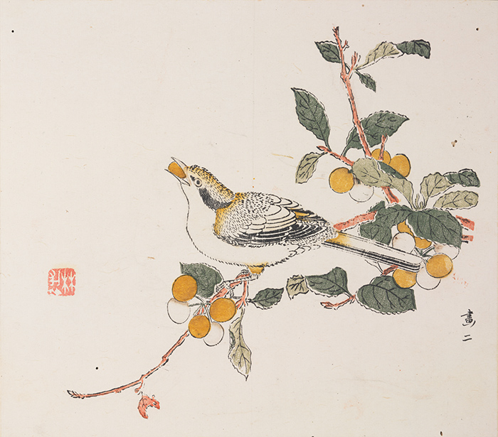 Detail of bird eating fruit, Painting 2, Ten Bamboo Studio Manual of Calligraphy and Painting, ca. 1633–1703, woodblock-printed book mounted as album leaves, ink and colors on paper. The Huntington Library, Art Collections, and Botanical Gardens.