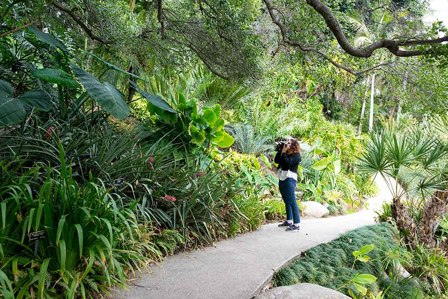 Beatriz Santiago Muñoz, filming in The Huntington's Jungle Garden. Photo by Kate Lain. The Huntington Library, Art Museum, and Botanical Gardens.