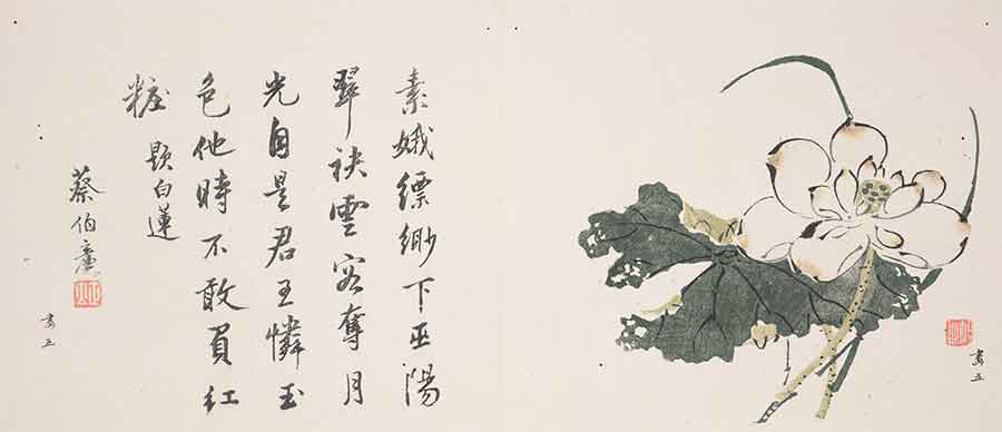 The lotus 蓮 (Nelumbo nucifera) has been a feature of ponds and lakes for such a long time that it is only through studies of its genome that it has been possible to trace its ancestry and origins. Woodblock image of a lotus by Hu Zhengyan 胡正言 in Ten Bamboo Studio Manual of Calligraphy and Painting 十竹齋書畫譜 Shi zhu zhai shu hua pu, vol. 3, fig. 5. Liu Fang Yuan Garden Collection. The Huntington Library, Art Collections, and Botanical Gardens.